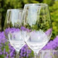 vacuvin-wijnglazen